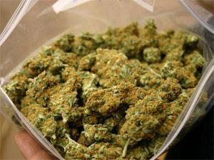 24 kilos de résines de cannabis ont été saisis et deux individus arrêtés jeudi 12décembre 2013 par une unité de la brigade des stupéfiants de Monastir