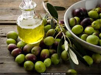 La production nationale de l'huile d'olive