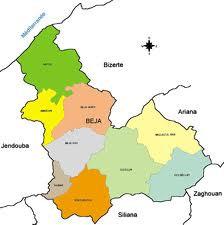 Le délégué régional de l'agriculture à Béja Ali Mekni a démenti