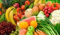Le Cepex a organisé une mission de rencontres exportateurs-importateurs de fruits et légumes à Gênes du 30 juin au 1er juillet 2013. La délégation tunisienne composée de 14 producteurs