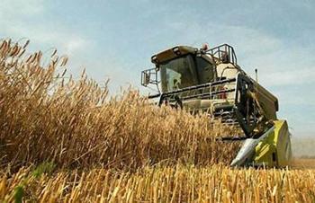 La Tunisie est un importateur de céréales