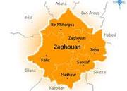 Des syndicalistes relevant de l'Union Régionale du Travail à Zaghouan qui ont protesté pacifiquement