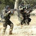 Les forces armées ont commencé à nouveau
