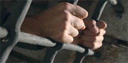 Le Tribunal cantonal de Tunis a condamné Bilel Chaouachi
