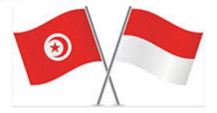 Le partenariat tuniso-indonésien monte en gamme