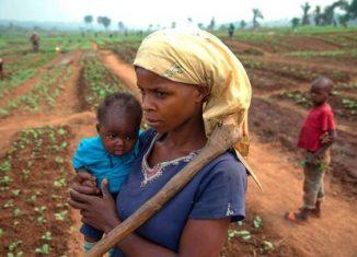 L'Afrique attend beaucoup du premier Forum pour la nutrition