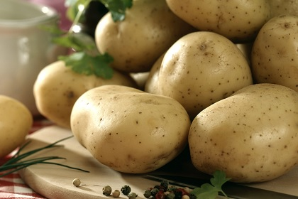 Le prix de vente de la pomme de terre a baissé de 26%