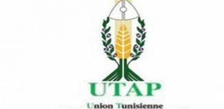L'UTAP revendique l'indemnisation des agriculteurs dans la région du Cap Bon