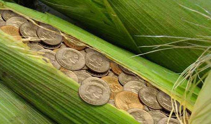 investissement agricole