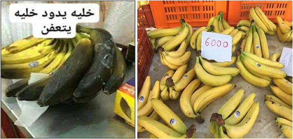 Les Tunisiens répondent en masse au boycott de pommes de terre et Bananes ! Bat2