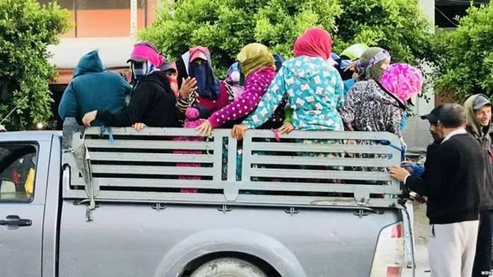 Transport des travailleurs agricoles